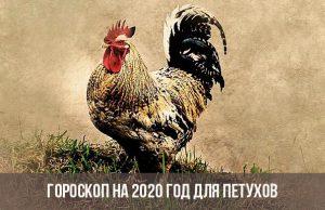 Гороскоп петуха на 2020 год