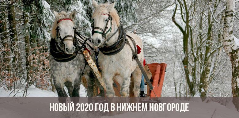 Нижний Новгород на Новый год Крысы 2020: встречаем и отмечаем
